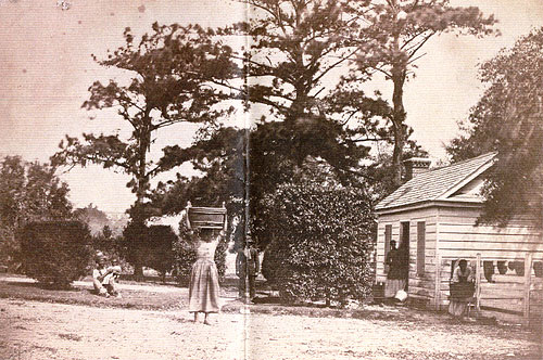 Negro Cabin, Hopkinson's Edisto Island, S. C.